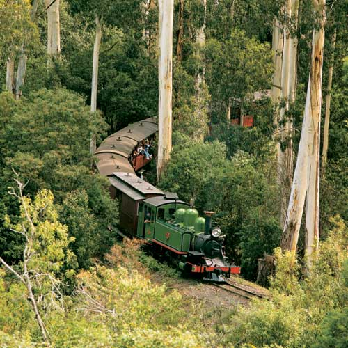 Coach Charter Puffing Billy Day Tours
